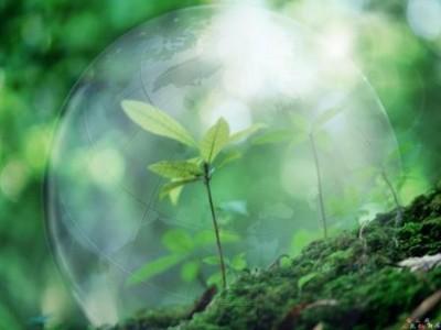 В Волгоградской области выбирают лучшие эколого-социальные проекты