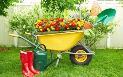 В Волгоградской области стартовала акция «Чистый двор»