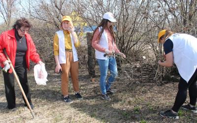 Волонтеры Центра молодежи провели экологический субботник