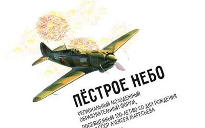 В волгоградском регионе стартовала регистрация на форум, посвященный Алексею Маресьеву