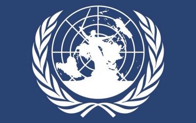 Молодежь региона приглашают стать участниками VIII Волгоградской международной модели ООН